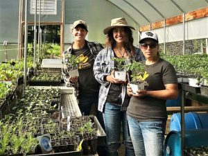 For starters: Here's your short list for coming plant sales in western Nevada County