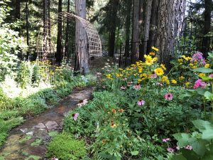 Be awed by beauty and creativity on Soroptimist Garden Tour