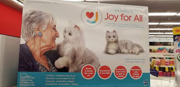 """For $99, the """"Joy for All"""" stuffed cat by Hasbro promises to move and sound like a real cat."""