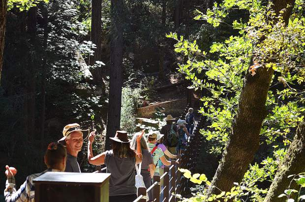 Among others, monthly outings have included an Indigenous Walk on Deer Creek with Shelly Covert of the Nevada City Rancheria Nisenan, Exploring Spenceville, and a Saunter to Table Mountain to see the wildflowers.
