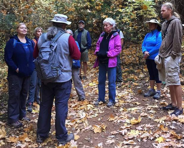 Hiking For Good has donated to Camp Fire victims and the California Native Plant Society.