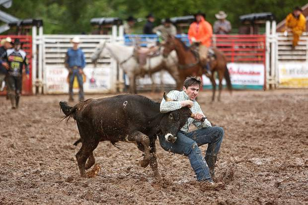 A steer wrestler tests his mettle in the mud filled Penn Valley Rodeo arena.