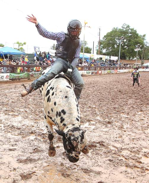 Grass Valley native Connor McClure rides the bull Hambone for a score of 80 during Saturday night's California Cowboys Professional Rodeo Association at the Penn Valley Rodeo. While the rain put a damper on the event and cancelled the parade, the CCPRA portion of the rodeo went on.