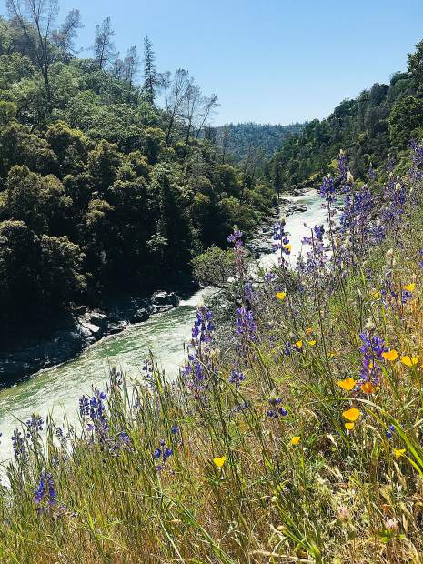 South Yuba River.
