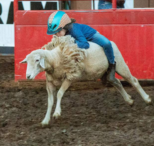 Photos from May 17, 2019 Penn Valley Rodeo.