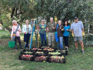 Sierra Harvest seeks volunteer gleaning harvest leaders in Nevada County