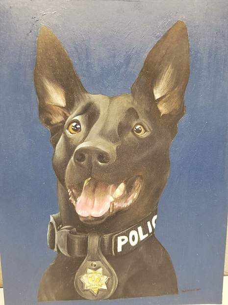 The portrait of Grass Valley Police Department K9 Kano captures the dog's rugged good looks and energetic personality.