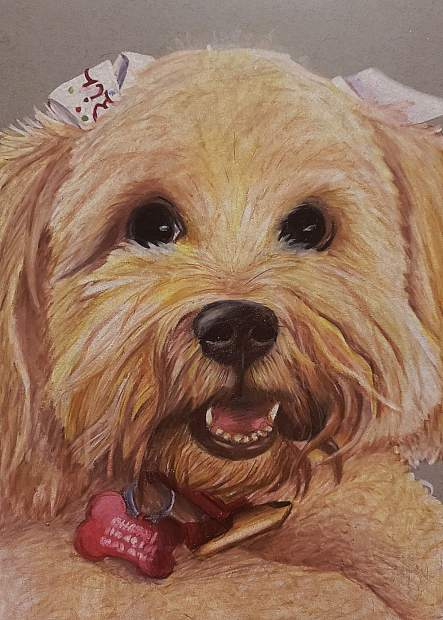 This realistic portrait of her grandmother's Maltese mix launched the canine portrait career of 14-year-old Kaydence Smith.