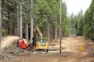 Striving for safety: PG&E Community Wildfire Safety Program work continues at White Cloud Campground (VIDEO/PHOTO GALLERY)