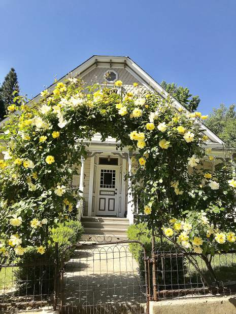 Fabulous rose arched gate in Grass Valley.