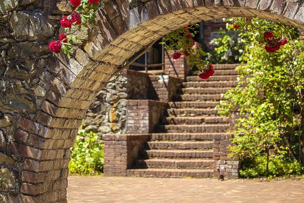 Blooming roses gracing the brick arch.