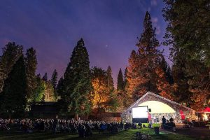 A summer tradition: Nevada City Film Festival's Movies Under The Pines returns