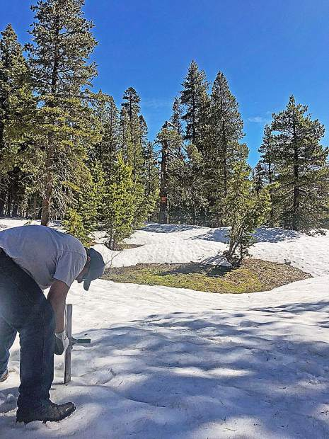 While snowpack measured 82 inches deep at one spot on English Mountain, bare ground was only 30 feet away.