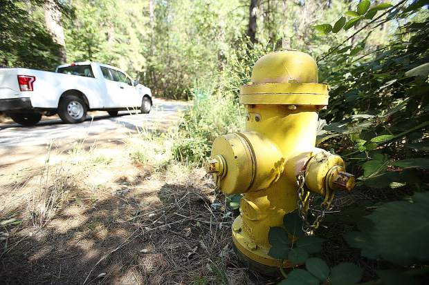 This fire hydrant, partially blocked by vegetation off of Welsh Lane in Alta Sierra, is considered an unmarked hydrant.