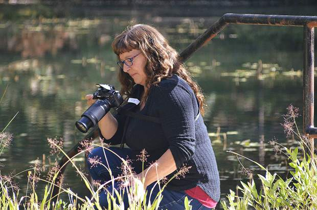 Denise Fink - Making the world a better place one photo at a time.