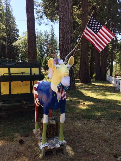 Patriotic deer on Colfax Highway.