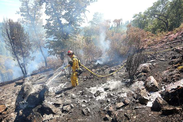 A Cal Fire firefighter uses a hose to douse a large tree that burned in a vegetation fire Aug. 6th on the side of a hillside along Wild Iris Lane near Lake of the Pines.