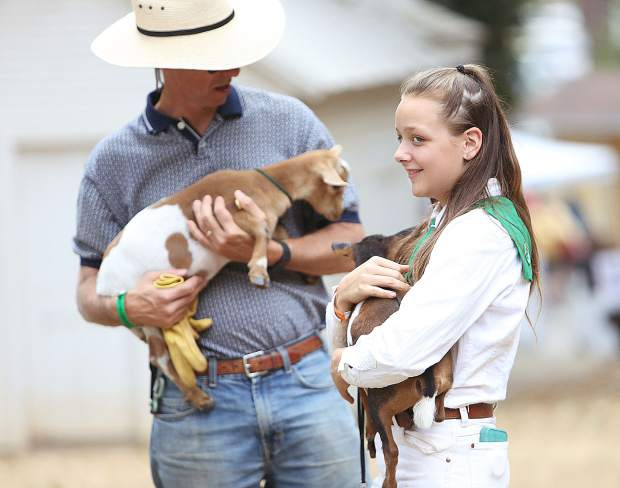 Allie Musser, 14, smiles before entering the ring with her Nigerian Dwarf dairy goat.