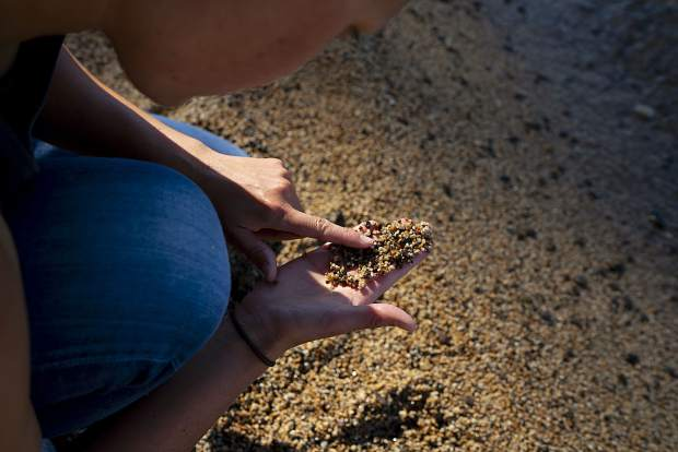 UC Davis staff Research Associate, Katie Senft, checks the sand for plastic at Incline Beach, Lake Tahoe. Sent is studying how much micro plastic finds its way into Lake Tahoe and beaches surrounding the lake.