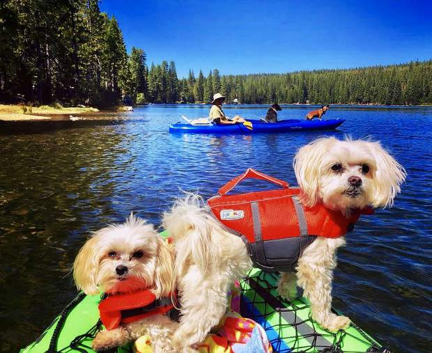 Kayaking with friends on Fuller Lake!
