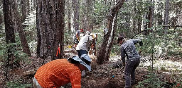 Members of Bicyclists of Nevada County (BONC) working on the Spaulding Lake Trail during their annual Grousefest Event.