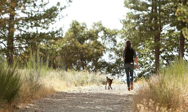 A walker and her dog enjoy a pleasant day on the Sugarloaf Trail Tuesday.
