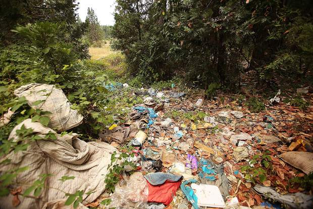 A pathway sits full of trash left from an abandoned homeless encampment on a property bordering Brunswick Road last week. Homeless people pushed out of the Glenbrook Basin due to housing construction set up camp on this property and have since been removed leaving piles of trash.