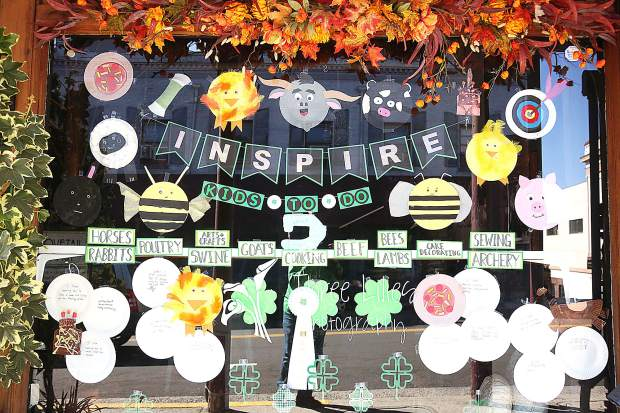 Meadowlarks 4-H'ers won third place with their window display in Three Lillies Photography in downtown Grass Valley.