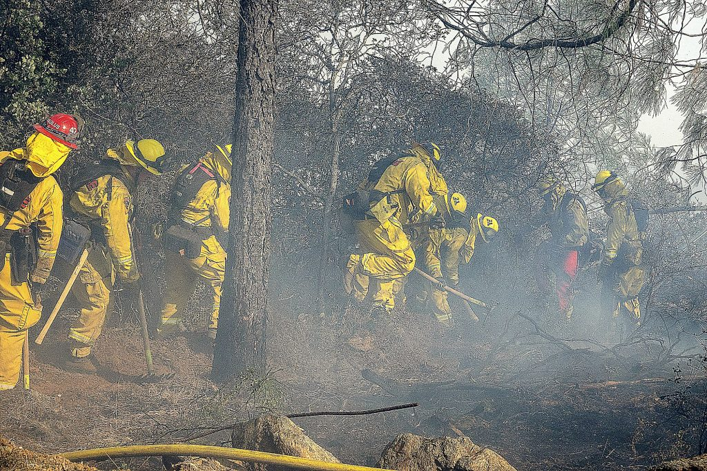 Cal Fire firefighters clear brush around a spot fire on Dorsey Drive.