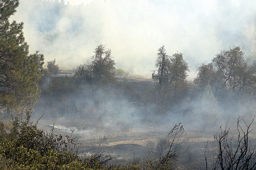 The fire burned vegetation on the east side of Sutton Way across from Dorsey Drive.