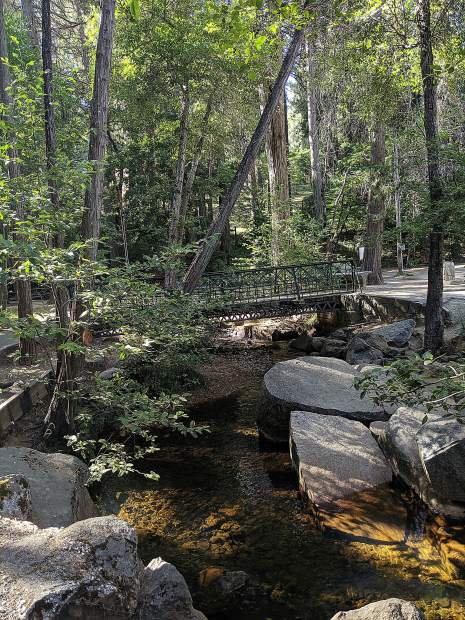 Looking for a beautiful, shady place for a picnic? Try this spot at Pioneer Park in Nevada City.