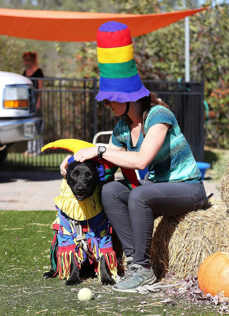 One of Sammie's friends, Jessica Houle with her lab Tyson, readies to wear his jester costume for a photo op during the Pitty Party.
