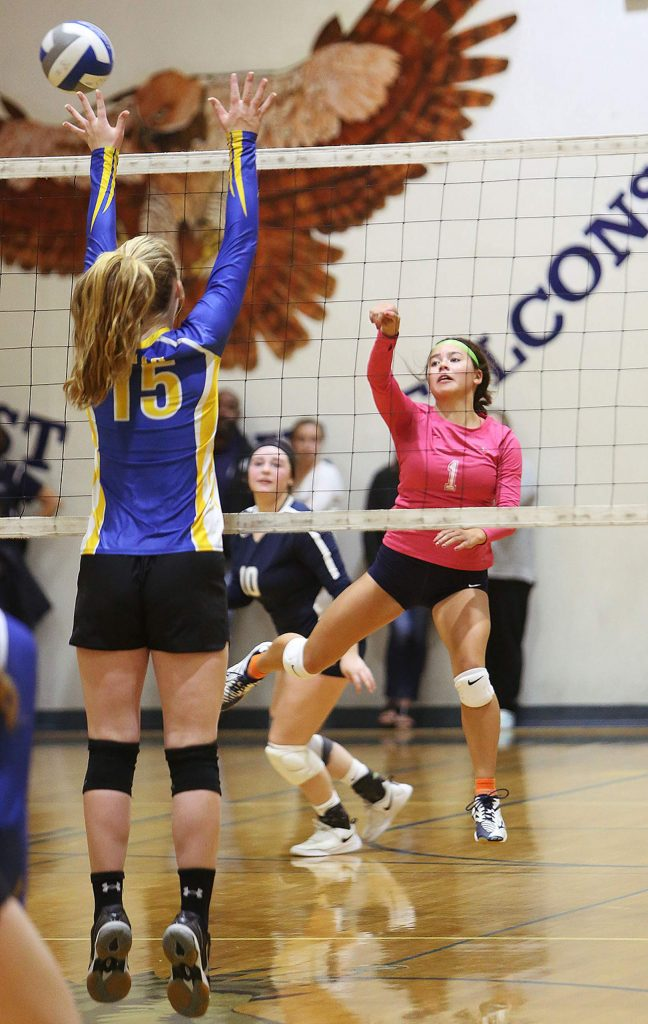 Forest Lake Christian libero Raegan Tanon (1) volleys the ball for the Falcons during Thursday night's win.