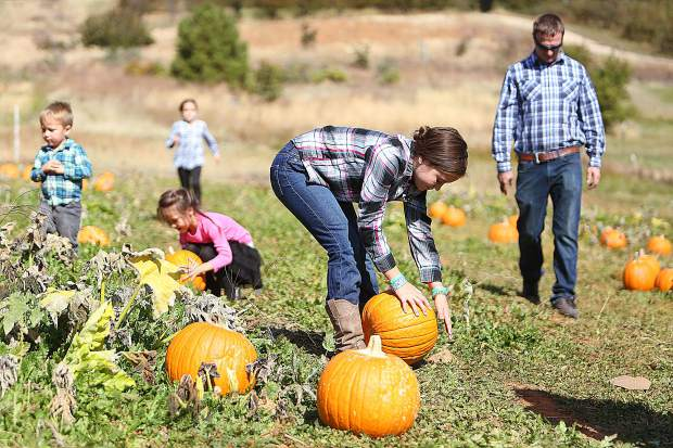 Members of Nevada County's White family — including Josiah, from left, Maddison, Liberty, Lyla and Jesse — took advantage of Tuesday's pleasant temperatures to get out to Bierwagen's Donner Trail Fruit and Pumpkin Patch to pick their favorite pumpkins and take their annual fall family photo. High temperatures are about to dip into the low 60s for the next few days before coming back to the mid- 70s by the beginning of next week.