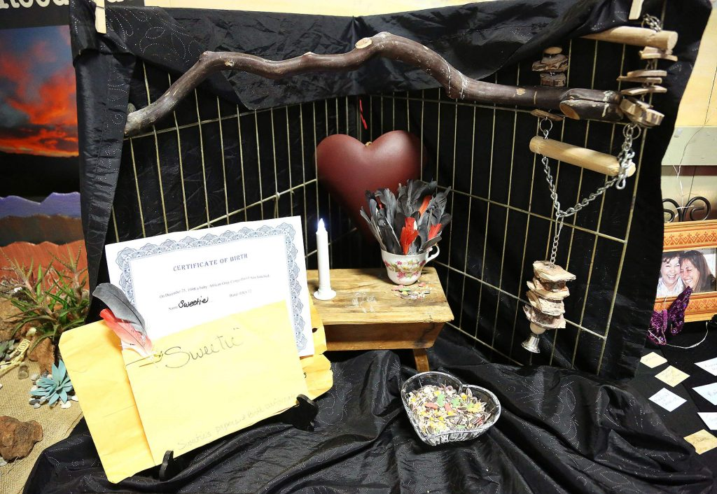 The altar titled Sweetie, by Gina Torvinen, honored the African Grey Parrot described as a fine funky feathered friend.
