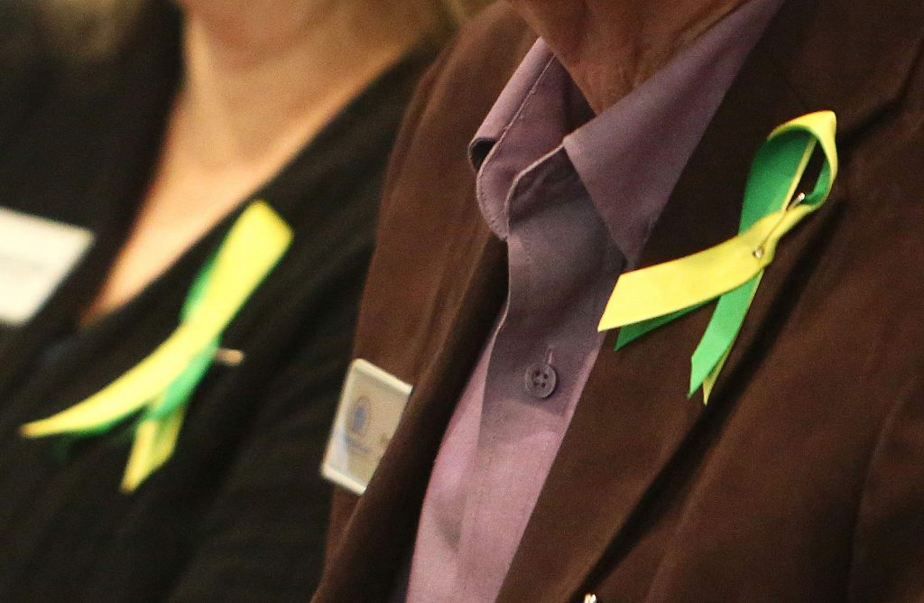 Those showing support for Gold Country Services' presentation Tuesday wore green and yellow lapel pins in the audience of the Board of Supervisors meeting.
