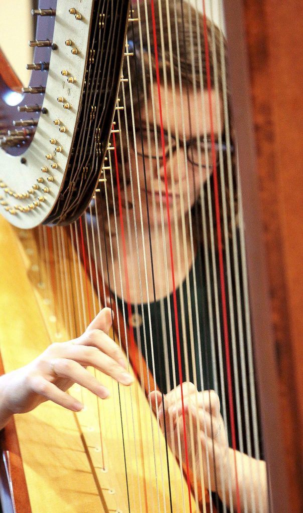 Sage Po plucks at the strings of her harp during Saturday's Music on Wheels program which included full performances at three separate senior living facilities.