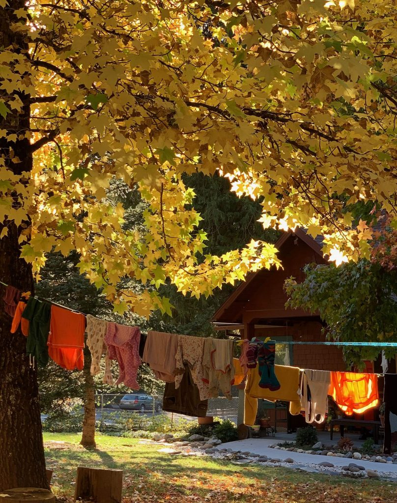 Rural scene of hanging laundry drying off Gold Ridge Road in Nevada City, Friday, October 25, 2019.