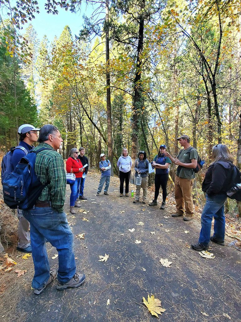 Bear Yuba Land Trust hosted a successful day of volunteer training and trail restoration at the new Wolf Creek trail in Grass Valley.