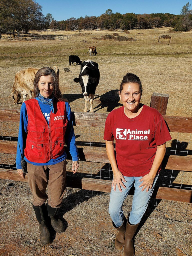 A nice visit at Animal Place in Grass Valley meeting volunteers Alida and Debbie.