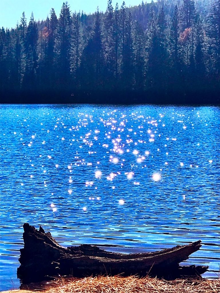 Rucker Lake was a shimmering sea of sparkles last Saturday.