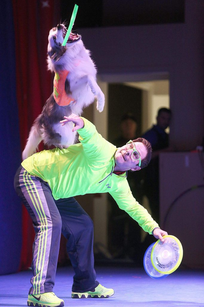 """Chris """"The Stunt Dog Guy"""" Perondi launches his dog Flashy Ferrari off his back with the toss of a frisbee during one of two shows offered by The Center For The Arts Friday at the Veterans Memorial Building."""