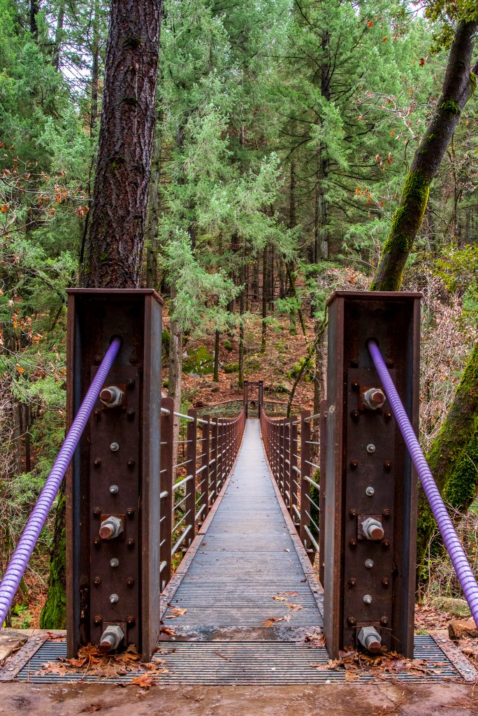 Tribute Trail Suspension Bridge, over Deer Creek, positioned purple leading lines (cables) with strong close elements (steel pillars) against an inviting bridge leading toward the horizon, and it won a Second Place at the fair.