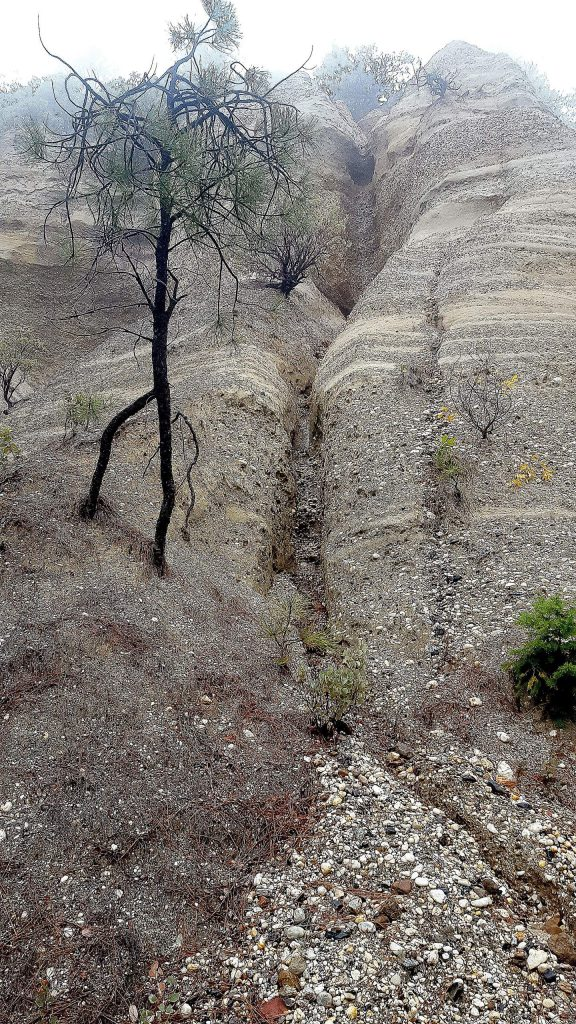 The cliff area above Gas Canyon Road shows how unstable some of the soil is in the area above the Cascade Shores wastewater treatment plant and proposed leach field.