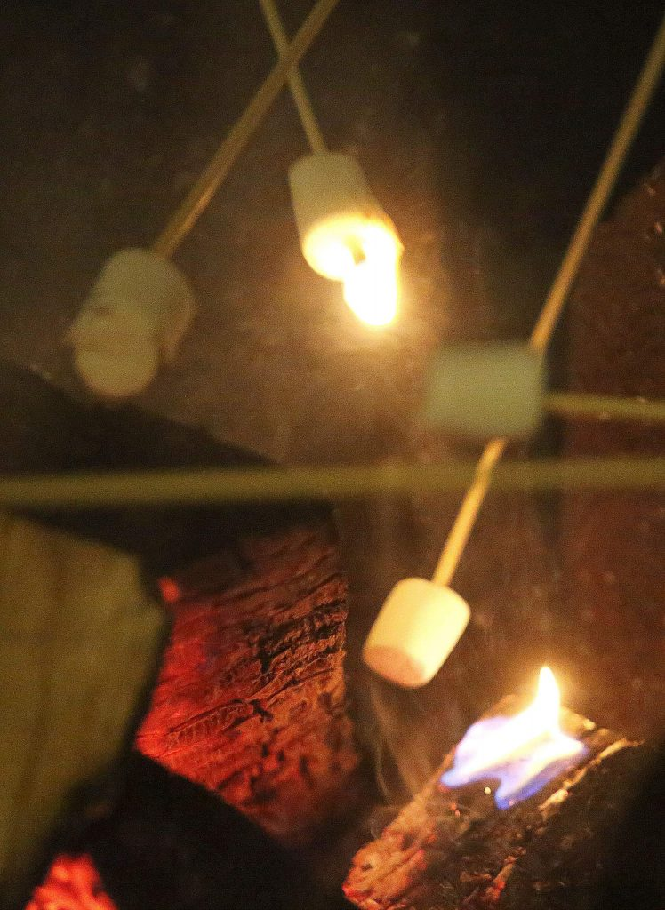 Marshmallows and other materials for making smores were provided by the renovators of the Holbrooke and National Exchange Hotels.