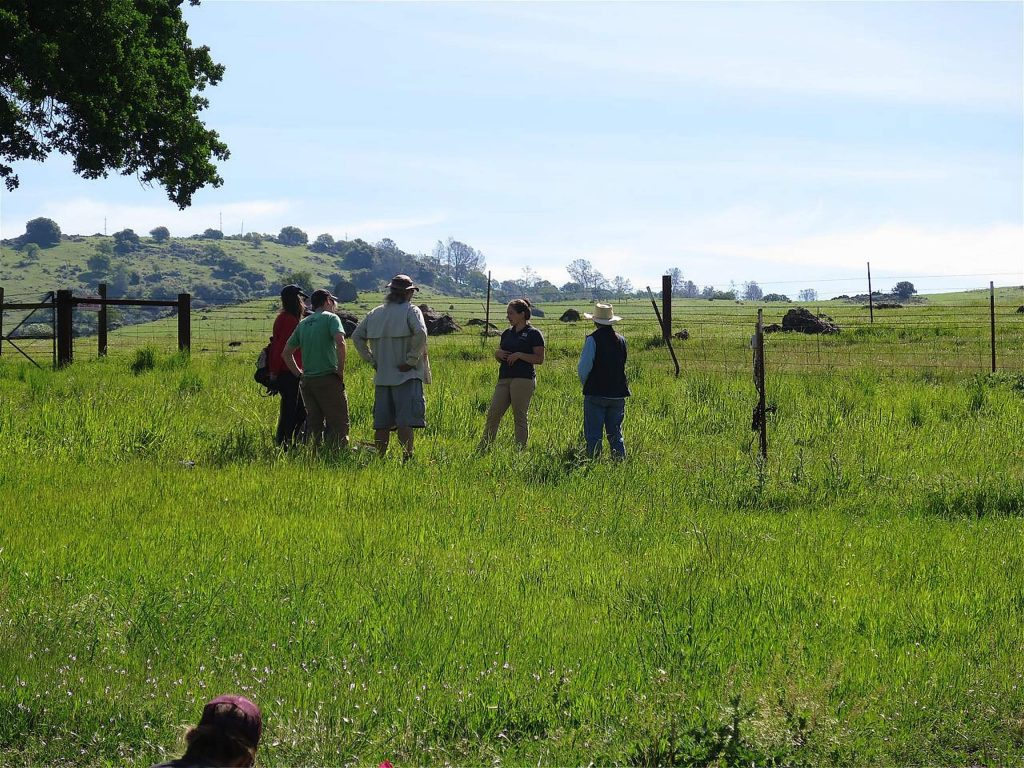 The California Naturalist course is for you. Each spring, Sierra Streams Institute partners with the University of California Division of Agriculture and Natural Resources to teach California Naturalist, a comprehensive course on the natural history of our local landscape.