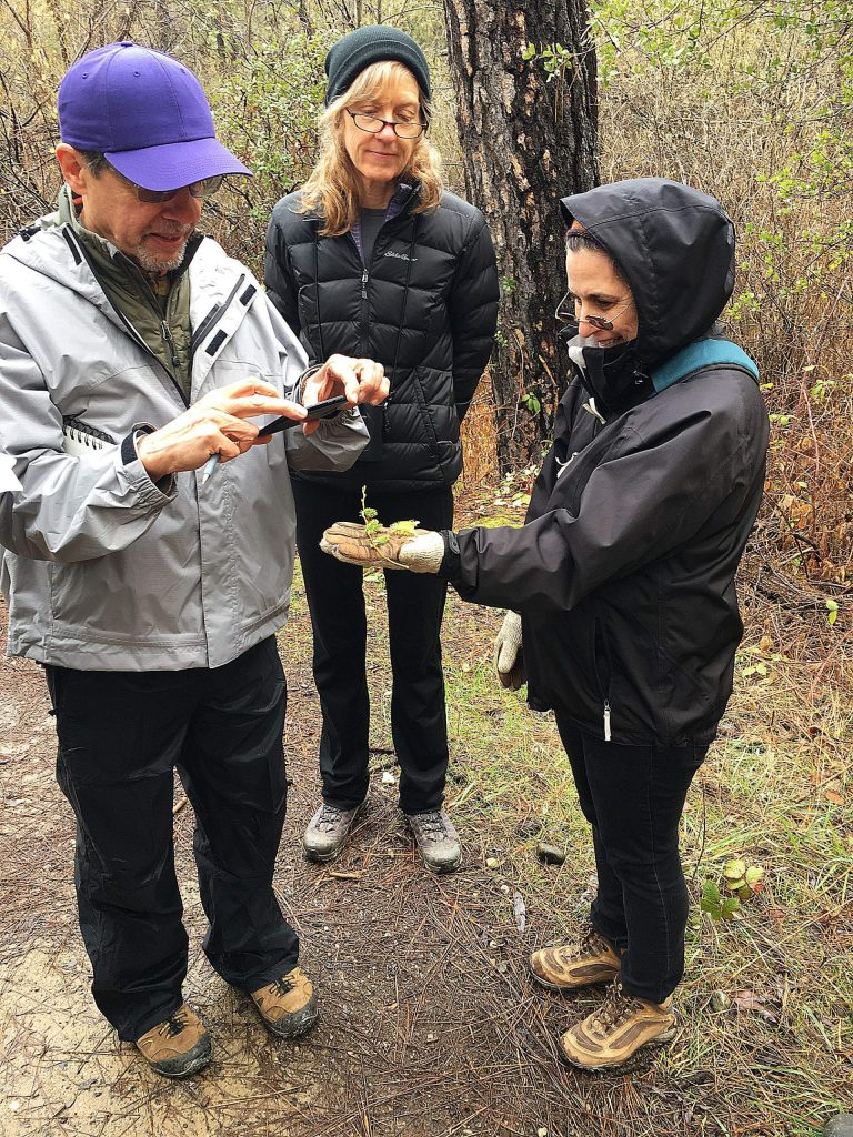 The course includes 10 presentation nights on Wednesdays from March 4 through May 13, each of which will feature a local expert on a natural history topic.