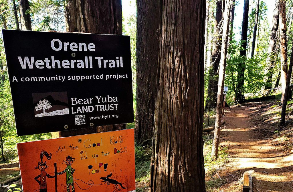 The Norlene Trail offers day hikers a longer trek if they so desire.