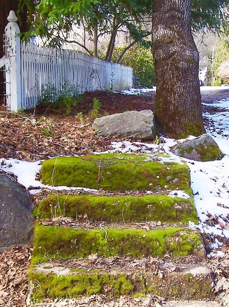 Nevada City steps in the snow . . .