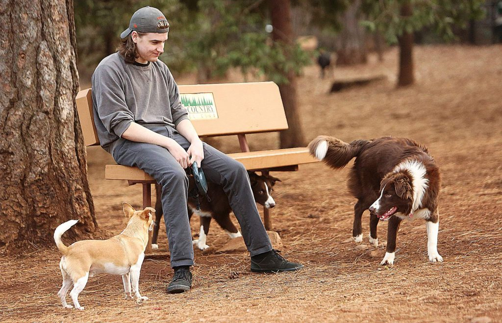 Seamus Woods sits with his little dog Sam Tuesday at the Condon Park Dog Park while Sam gets one last dog run in for the year. Folks have been taking advantage of the sunshine and good weather which is expected to last through Wed Jan 8th with the exception of a 20 and 30 percent chance of rain this Saturday and Sunday.